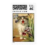 el gato y el iris de la postal del vintage del sel sellos