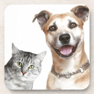 El gato y el perro dice ey posavasos de bebidas