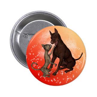 El gato y el perro pins