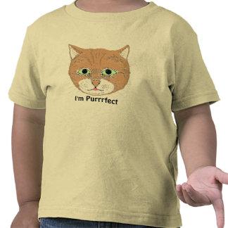El gato y yo marrones lindos somos Purrrfect