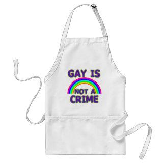 El gay no es camisetas de un crimen, suda, las sud delantal