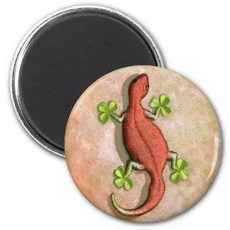 El Gecko de St Patrick Imán Redondo 5 Cm