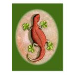 El Gecko de St Patrick Postales