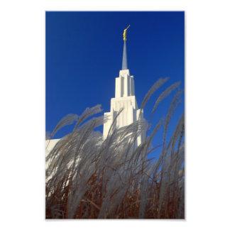 El gemelo se cae templo mormón de Idaho LDS Cojinete