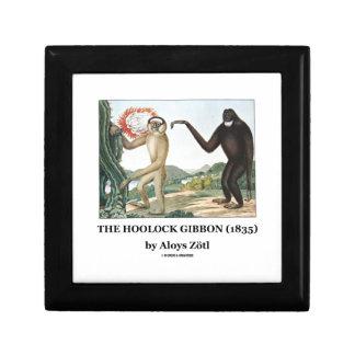 El Gibbon de Hoolock (1835) por Aloys Zotl Caja De Regalo