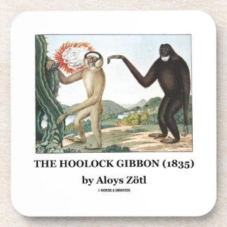 El Gibbon de Hoolock (1835) por Aloys Zotl Posavaso