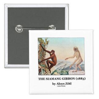 El Gibbon de Siamang (1883) por Aloys Zotl Pin Cuadrada 5 Cm