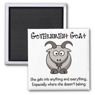 El gobierno va a adonde no pertenece imán cuadrado