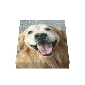 El golden retriever sonriente envolvió la impresió lienzo envuelto para galerias