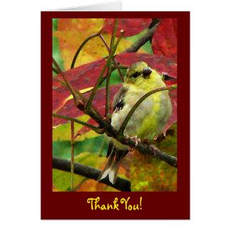 El Goldfinch en otoño le agradece Tarjeta Pequeña