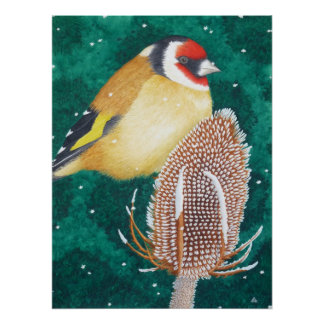 El Goldfinch europeo Poster