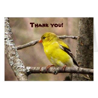El Goldfinch le agradece Tarjeta Pequeña
