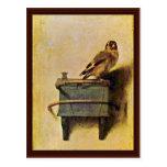 El Goldfinch., Puttertje de Carel Fabritius Tarjeta Postal