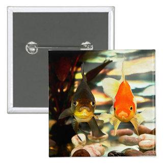El Goldfish de lujo hace frente a imagen de la Chapa Cuadrada 5 Cm