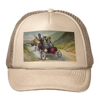 El Golfing que va de los gatos en las montañas de Gorro De Camionero