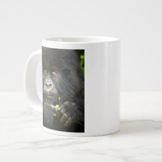 El gorila de montaña juvenil alimenta en las hojas taza grande