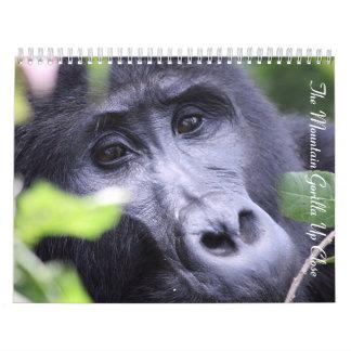 El gorila de montaña para arriba no cierra ningún calendarios