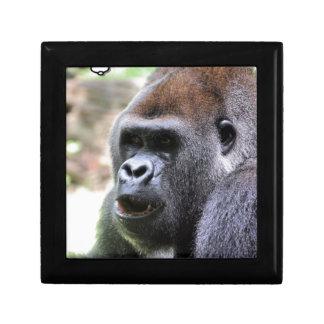 El gorila dice joyero cuadrado pequeño