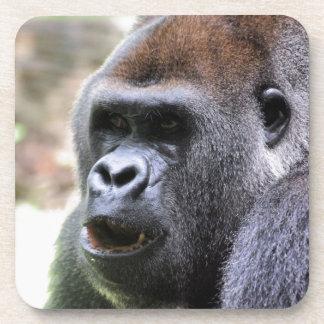 El gorila dice posavasos de bebidas