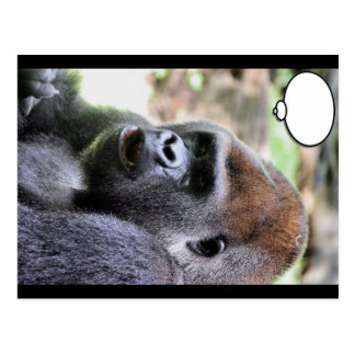 El gorila dice postales