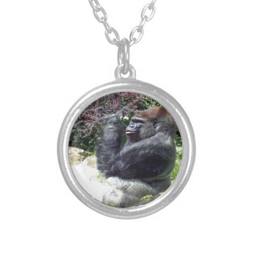 el gorila goza de la flor hermosa grímpola