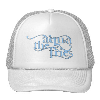 El gorra 1 de las fritadas de la aguamarina