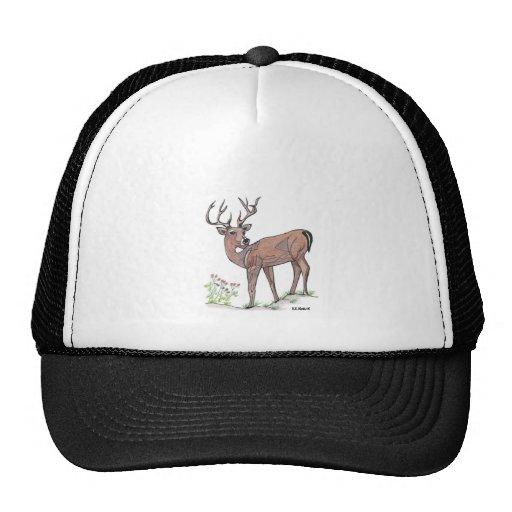 El gorra de los ciervos