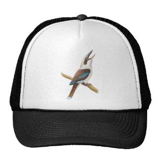 El gorra de risa de Kookaburra