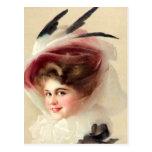 El gorra emplumado halcón tarjetas postales