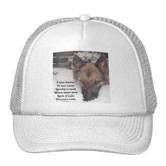 El gorra I tiene poema de los sueños al lado del a