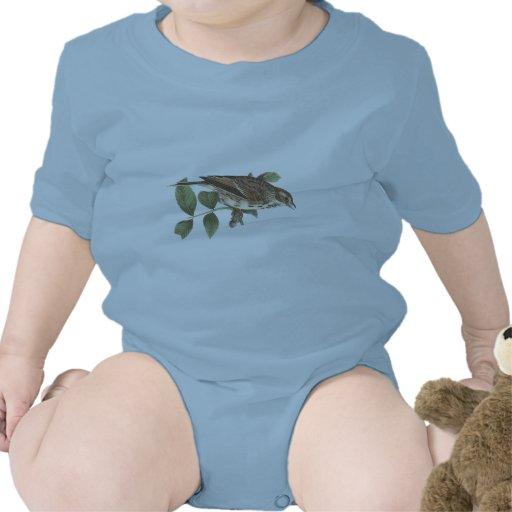 El gorrión Bahía-con alas(graminea del Fringilla) Traje De Bebé