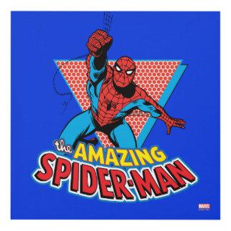 El gráfico asombroso de Spider-Man Cuadro