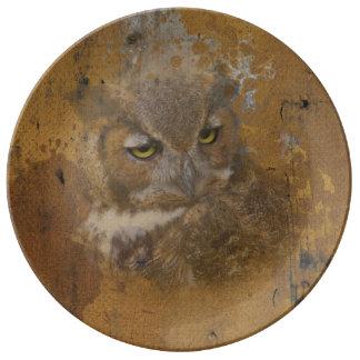 El gran búho de cuernos se descoloró en la madera platos de cerámica