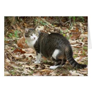 El gran gato tarjeta de felicitación