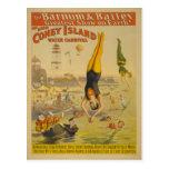 El gran poster del carnaval del agua de Coney Isla Tarjetas Postales