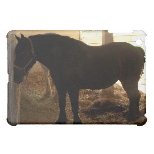 El granero de caballo