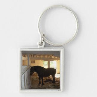 El granero de caballo llavero cuadrado plateado