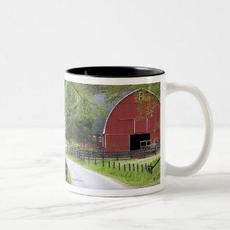 El granero y la granja rojos contienen cerca de taza de dos tonos