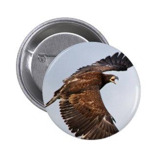 El grito de Eagle calvo me alimenta en un adulto Chapa Redonda 5 Cm