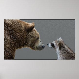El Grizzle resuelve el mapache Poster