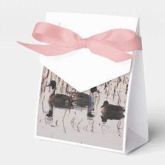 El grupo de patos del pato rojizo recolecta y las caja para regalos de fiestas