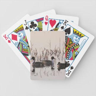 El grupo de patos del pato rojizo recolecta y las baraja de cartas