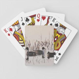El grupo de patos del pato rojizo recolecta y las barajas de cartas