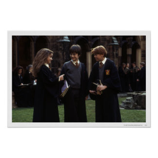 El grupo fuera de Hogwarts Póster