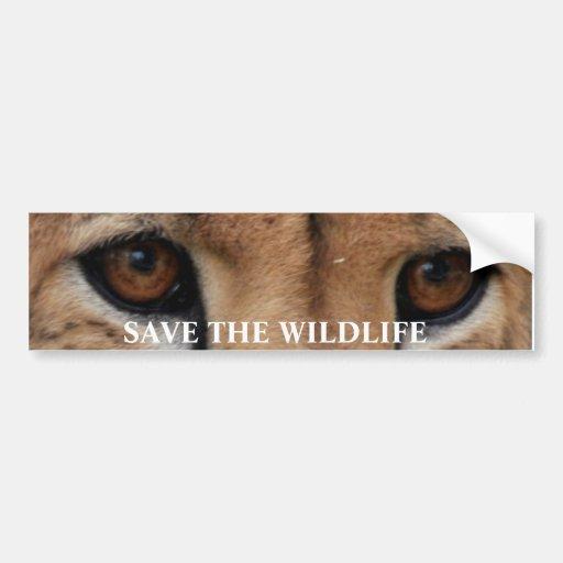 El guepardo Eyes1, AHORRA la FAUNA Pegatina De Parachoque
