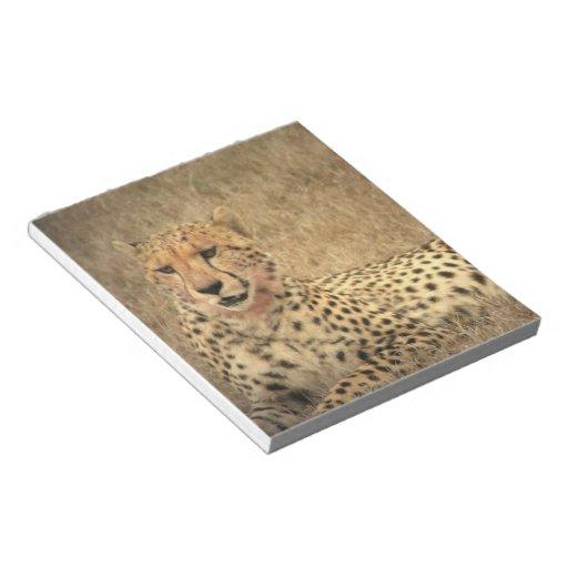 El guepardo mancha la libreta blocs