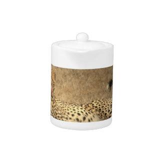 El guepardo mancha la tetera