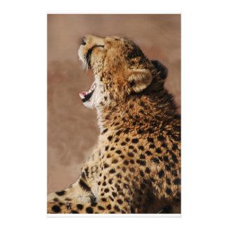 El guepardo podía asustar un león papelería personalizada
