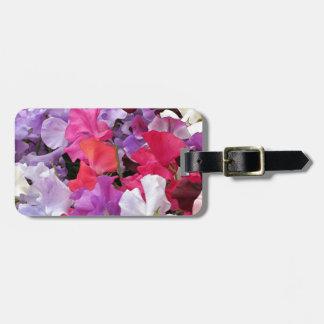 El guisante de olor rosado, púrpura y blanco flore etiqueta para equipaje