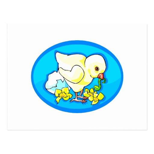 el gusano del polluelo florece óvalo azul postal